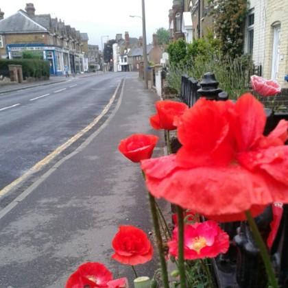 Walk Faversham