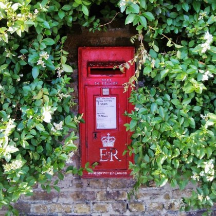 Conyer's post box, and my favourite ligustrum