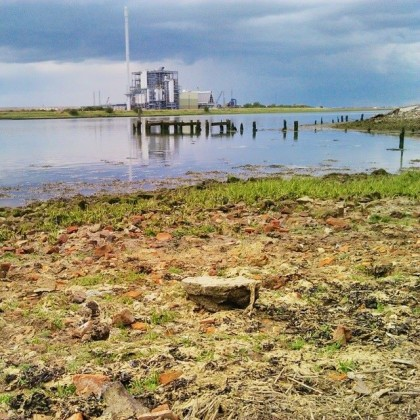 Elmley National Nature Reserve, Looking over the old Turkey Brick and Cement Works